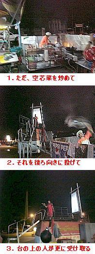 pisanu_fly.jpg